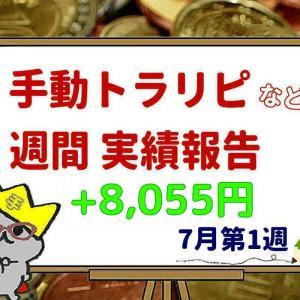 【手動トラリピ他】7月第1週のFX運用実績 +8,055円