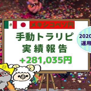 メキシコペソ円手動トラリピ22か月の実績【2020年6月末】+281,035円