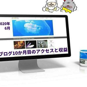 ブログ運営実績10か月目のアクセス6700PV、収益8,300円【2020年6月度】