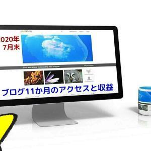 ブログ11か月目の運営記録 アクセス8100PV、収益12,500円【2020年7月度】