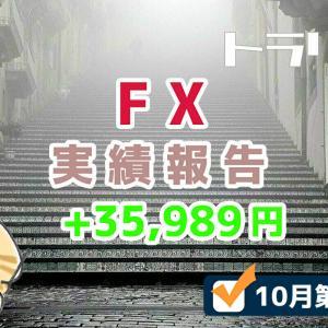 手動トラリピなどのFX週間実績【10月第4週】+35,989円