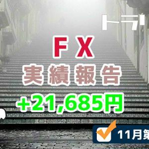 手動トラリピなどのFX週間実績を報告するブログ【11月第3週】