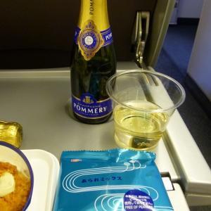 JALプレミアム・エコノミークラスの機内食~成田からフランクフルト~ エア・モスは楽しいね!