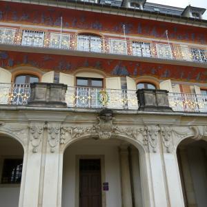ピルニッツ宮殿で樹齢250年の日本の椿に出会った