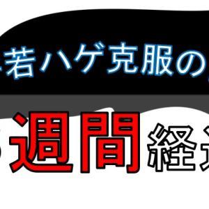 M字若ハゲ克服生活の記録( 4週間 経過 )