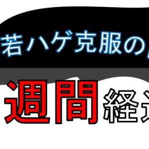 M字若ハゲ克服生活の記録( 5週間 経過 )