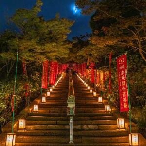 月夜の灯り
