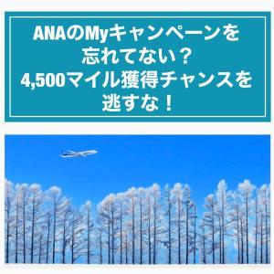 ANAのMyキャンペーンを忘れてない?4,500マイル獲得チャンスを逃すな!