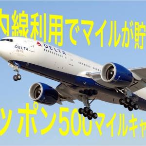 デルタニッポン500マイルキャンペーン!申請方法と注意点まとめ!