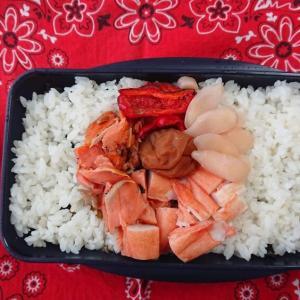 がんばれニッポン!日の丸弁当 紅鮭編