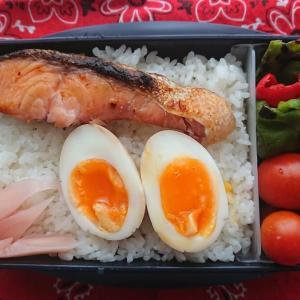 秋の塩鮭と味玉弁当