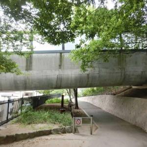 伊丹緑道から猪名川左岸
