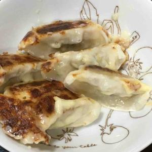 餃子にチーズの羽根(失敗?)