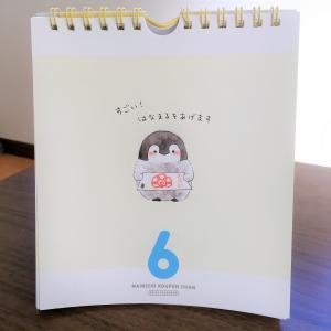 【日めくりカレンダー】コウペンちゃんが毎日励ましてくれる:〇〇したの?えらい!【妻のおすすめ】