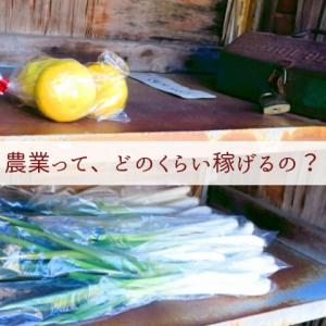 【新規就農Q&A】農業って、どのくらい稼げるの?:まずはこの考え方から抜け出しましょう
