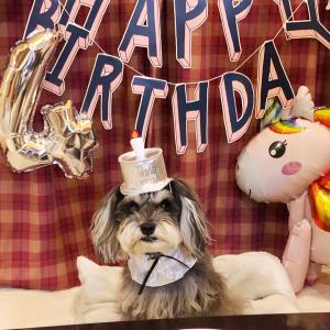4歳の誕生日!