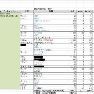 6月の家計簿~キャッシュレス生活~