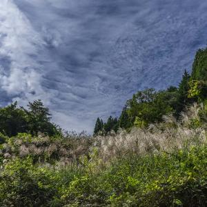 10月7日 花脊・広河原・佐々里を探索