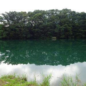 【神流川 へら鮒釣り】令和元年9月7日の釣果