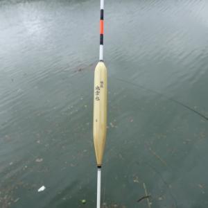 花見川のへら鮒釣りは中止に。