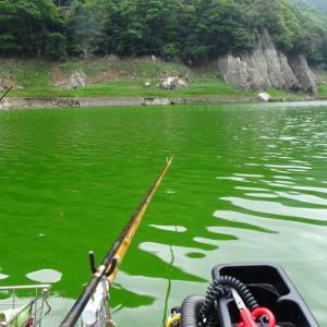 【へら鮒釣り】大自然の中は格別