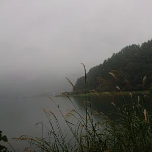 【河口湖 へら鮒釣り】令和元年10月17日の釣果