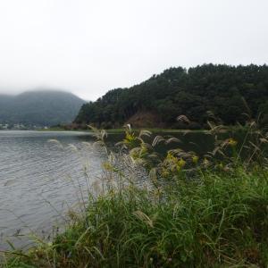 【河口湖 へら鮒釣り】令和元年10月17日の釣果記事