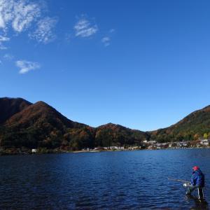 【河口湖 へら鮒釣り】令和元年11月20日の釣果