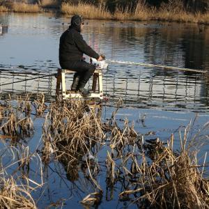 【へら鮒釣り】1ヶ月の釣行距離2500キロ