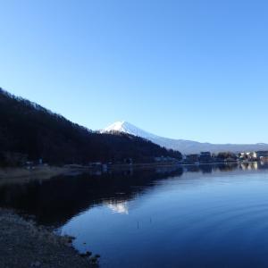 【河口湖へら鮒釣り】令和2年2月24日の釣果