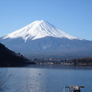 【河口湖へら鮒釣り】令和2年3月25日の釣果