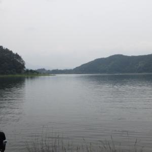 【河口湖へら鮒釣り】令和2年6月6日の釣果
