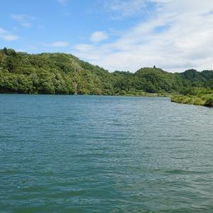 【相模湖上野原へら鮒釣り】令和2年6月10日の釣果