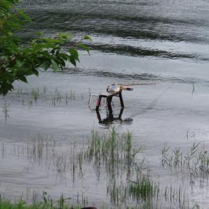 【河口湖へら鮒釣り】アングラーズイメージ笑
