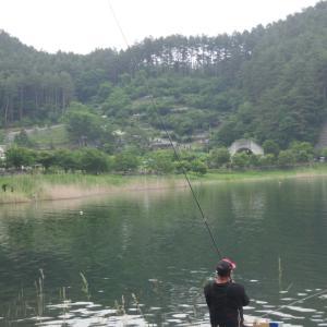 【へら鮒釣り】凸りに行きますか!