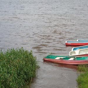 【河口湖へら鮒釣り】過激な水位変化とトラブル