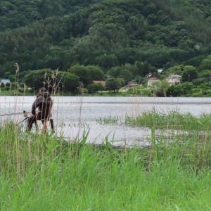 【河口湖へら鮒釣り】ついに「ブツ」が到着