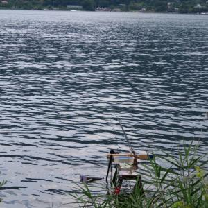 【河口湖へら鮒釣り】令和2年8月1日の釣果