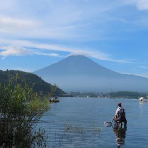 【河口湖へら鮒釣り】令和2年8月9日の釣果
