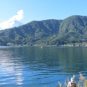 【河口湖へら鮒釣り】令和2年9月5日の釣果