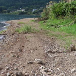 【河口湖へら鮒釣り】令和2年9月19日の釣果