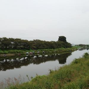 【へら鮒釣り】びん沼