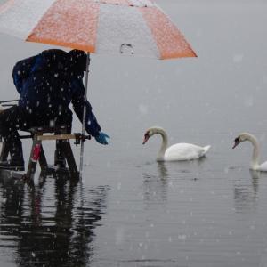 【河口湖へら鮒釣り】今年はシーズンオフしません!