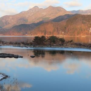 【河口湖へら鮒釣り】令和3年1月15日の釣果