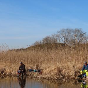 【印旛沼へら鮒釣り】令和3年2月23日の釣果