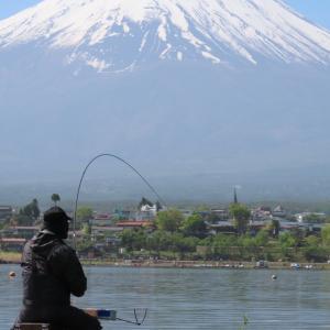 【へら鮒釣り】近況