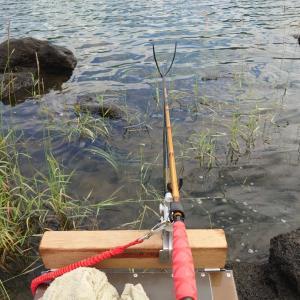 【河口湖へら鮒釣り】令和3年7月3日の釣果
