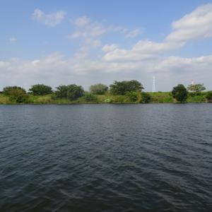 【荒川本流 へら鮒釣り】令和元年8月10日の釣果