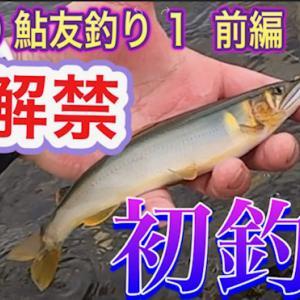2020 鮎友釣り 1 鮎解禁 初釣り
