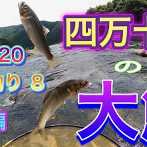 2020 鮎友釣り8  四万十川の大鮎 を公開しました。